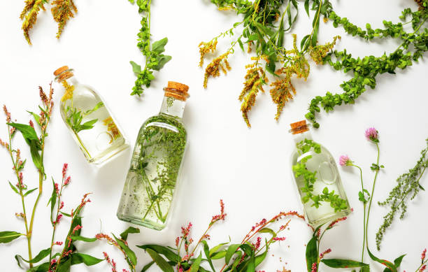 spa herbal infusions - botany stock pictures, royalty-free photos & images