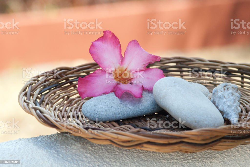 Spa ingredients on wood plate stock photo