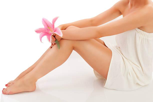 - spa - wachsblume stock-fotos und bilder