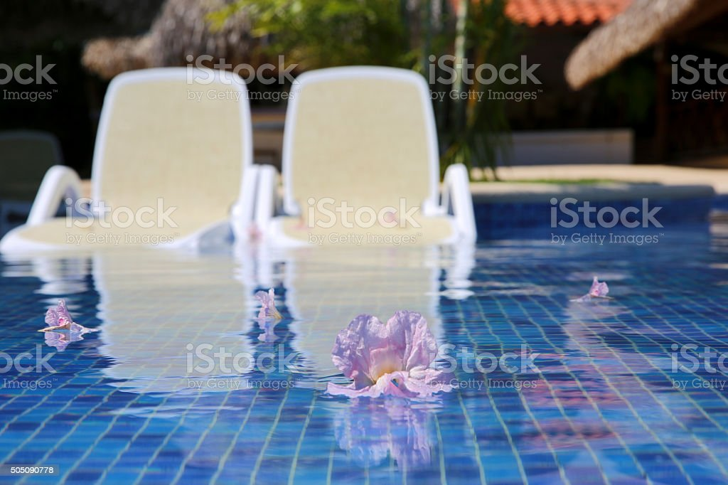 Spa Pool with Floating Flowers and Lounge Chairs stock photo