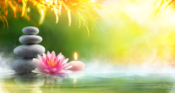 spa - relaxation with massage stones and waterlily in water - naturopathy stock photos and pictures
