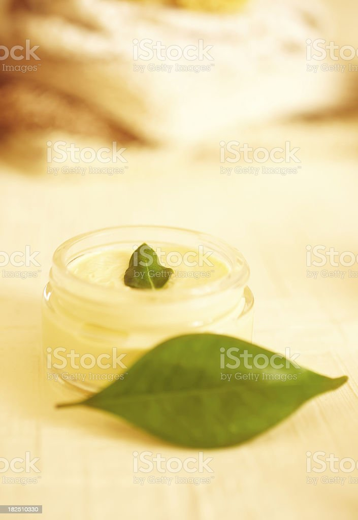 Spa still life of moisturizer with green leaf royalty-free stock photo