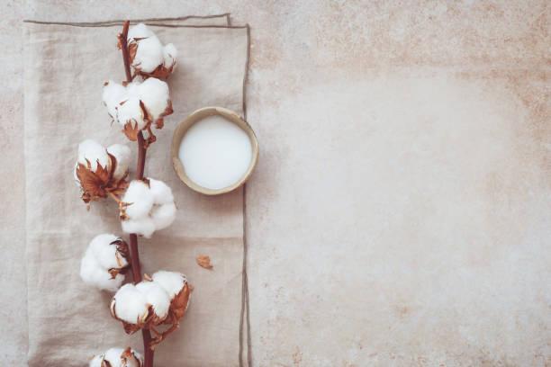 水療靜物美容護膚品 - 棉 個照片及圖片檔