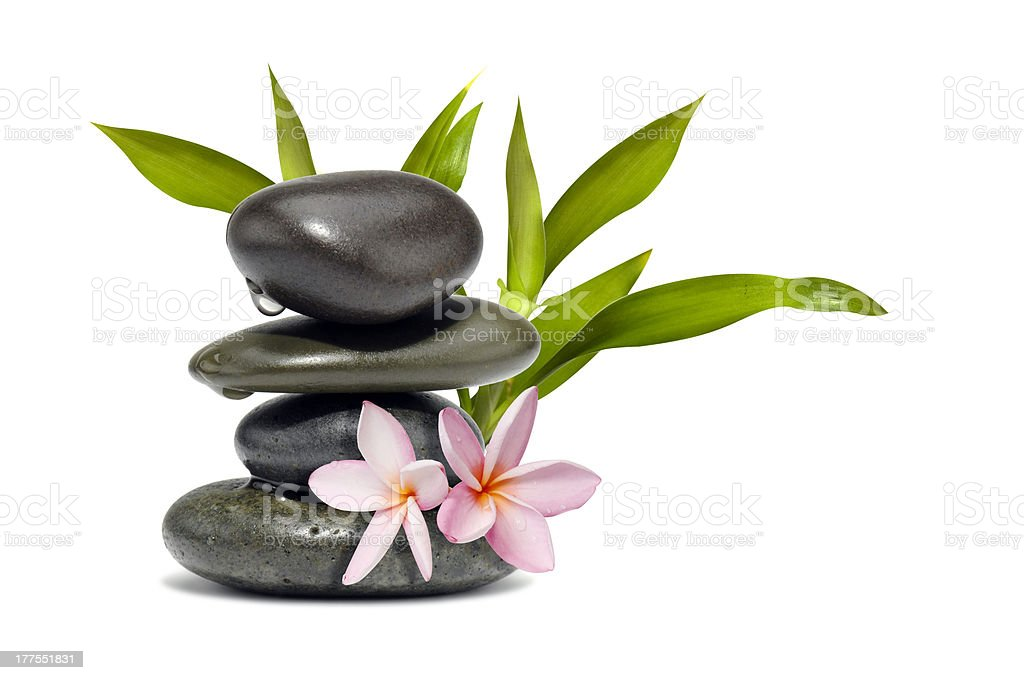 Spa still life with flowers and green leafs stock photo