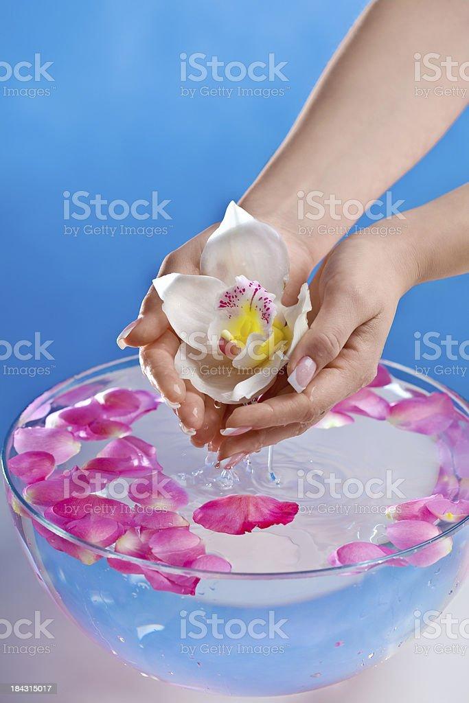 Spa-Behandlung für die Hände Lizenzfreies stock-foto