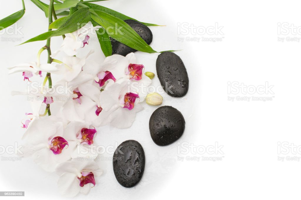 Spa white orchid with massage stones on white - Zbiór zdjęć royalty-free (Aromaterapia)