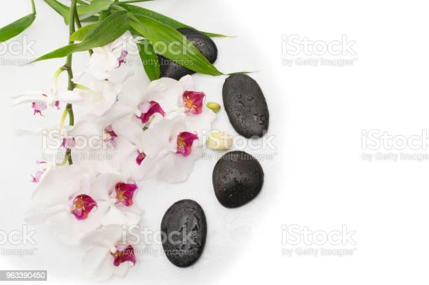 Spa Biała Orchidea Z Kamieniami Do Masażu Na Białym - zdjęcia stockowe i więcej obrazów Aromaterapia