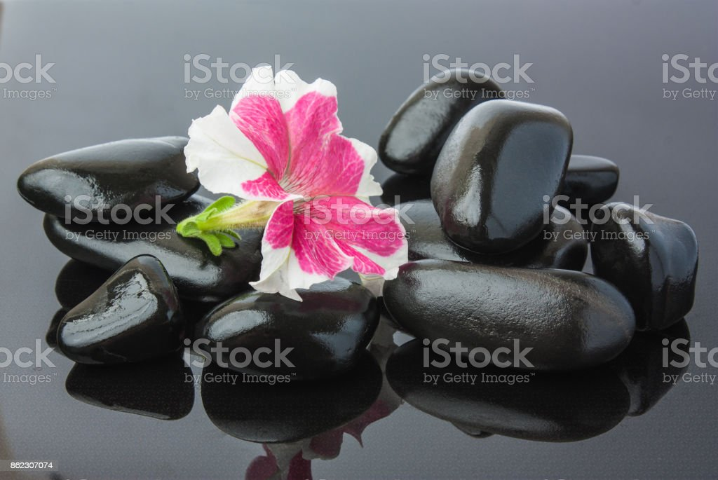 Spa with black stones stock photo