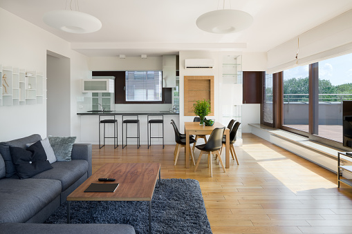 Spacious and stylish apartment with window wall and kitchen open to living room with table
