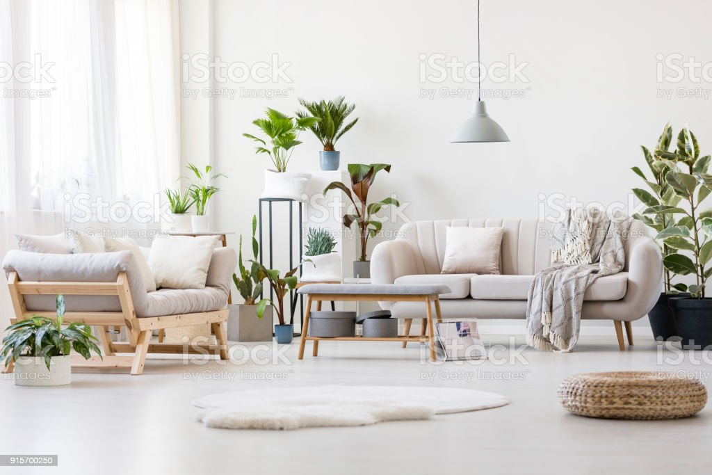 Spacious Floral Living Room Stock Photo & More Pictures of Apartment ...