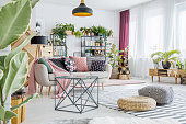 Spacious living room with plants