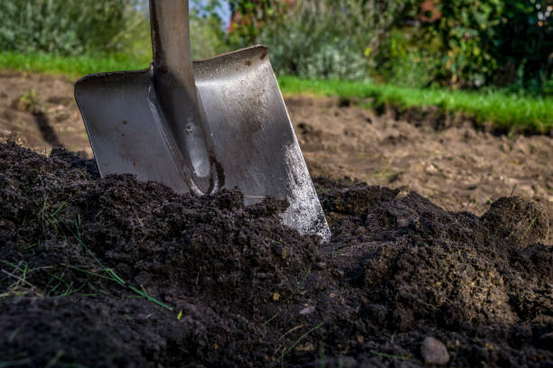 spade in the dirt stock photo