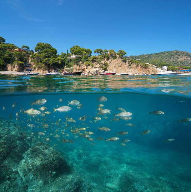 Barcos de España cerca de la costa rocosa y pescan bajo el agua - foto de stock
