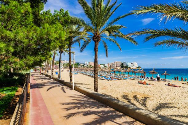 Majorque Espagne, plage de bord de mer avec des palmiers à Magaluf - Photo