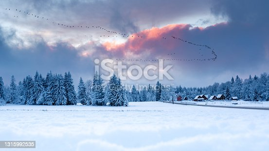 istock Spalona, winter landscape with colorful clouds illuminated by the setting sun. 1315992535