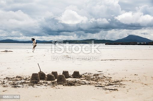 Spaniel dog playing on Donegal beach