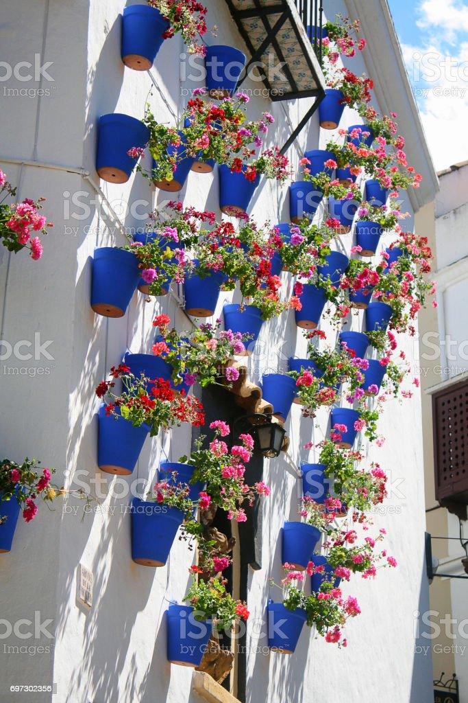 iStock & Spanish Ceramic Flower Pots Spanish Village Barcelona Spain ...