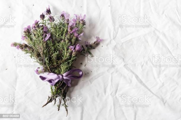 Spanish lavender posy on tablecloth picture id859199488?b=1&k=6&m=859199488&s=612x612&h=wfmt2cs7yd8fe5lnd9alwmolf3gdwu1pkhskchdpvuk=