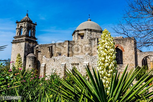 The Historic Old West Spanish Mission San Jose, 1720, San Antonio, Texas, with a White Yucca Flower.