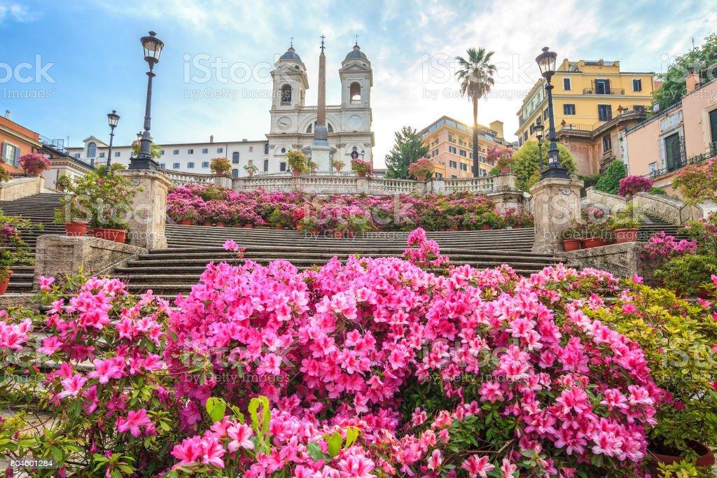 Spanish steps with azaleas at sunrise, Rome stock photo