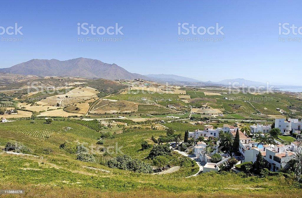 Spanish vineyards overlooking Duquesa royalty-free stock photo