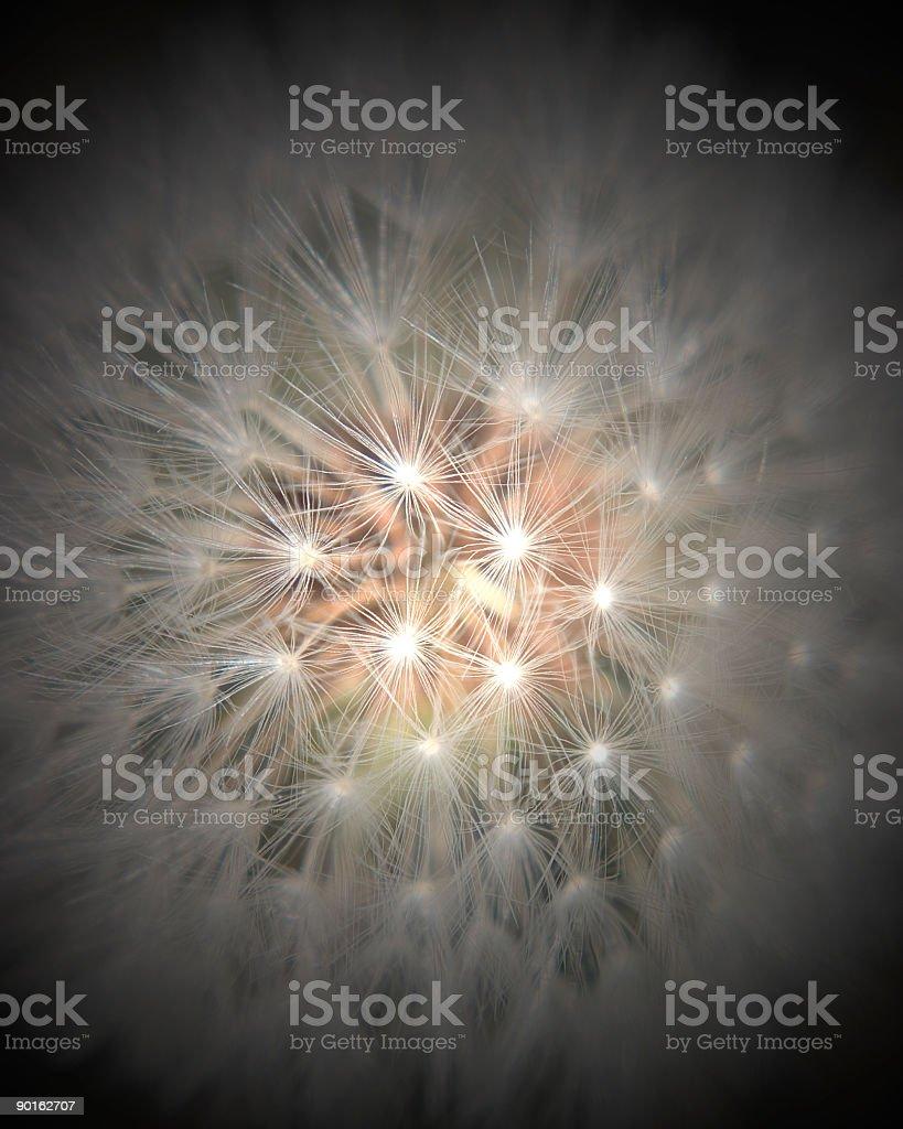 Sparkle stock photo