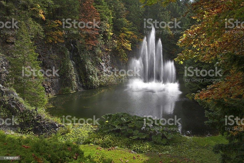 Sparkling jets of a fountain. royalty-free stock photo