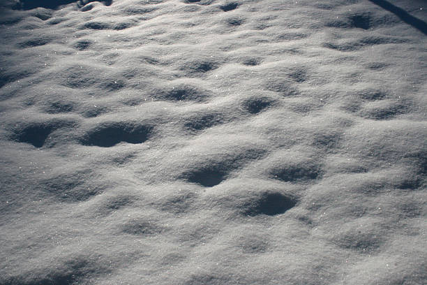 Sparkling Snow Field 2