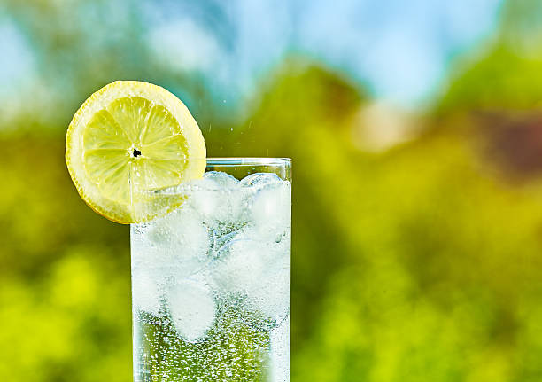 Sparkling water and lemon slice stock photo