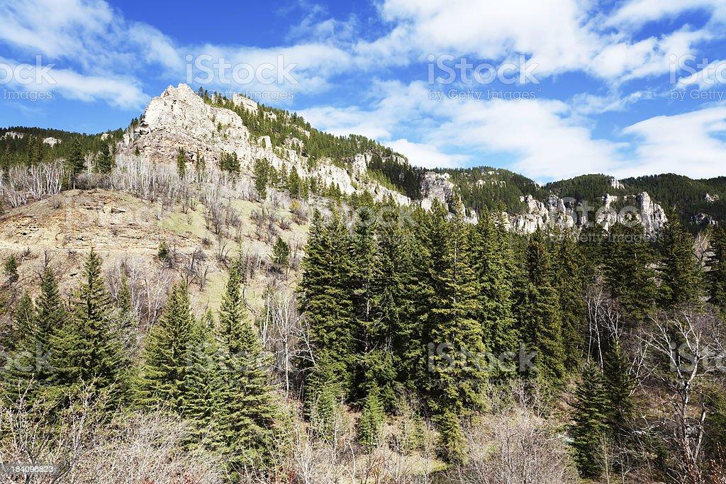 Spearfish Canyon, Black Hills National Forest, South Dakota stock photo