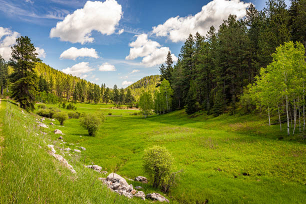 Spearfish Canyon Scenic Byway stock photo