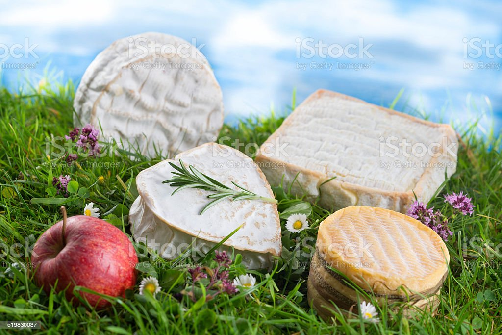 Speciaity cheese from Normandy France stock photo