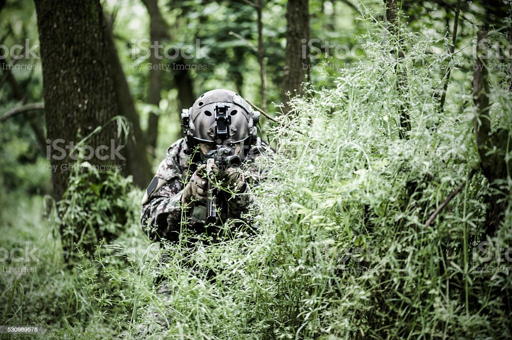 Special armed forces in woods