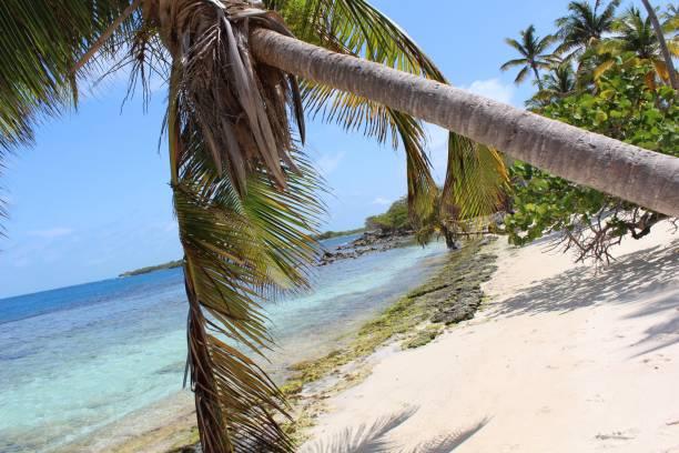 Playa especial en un parque natural en Venezuela - foto de stock