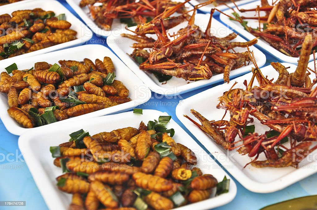 Special food , Fried grasshoppers in thailand,closeup royalty-free stock photo