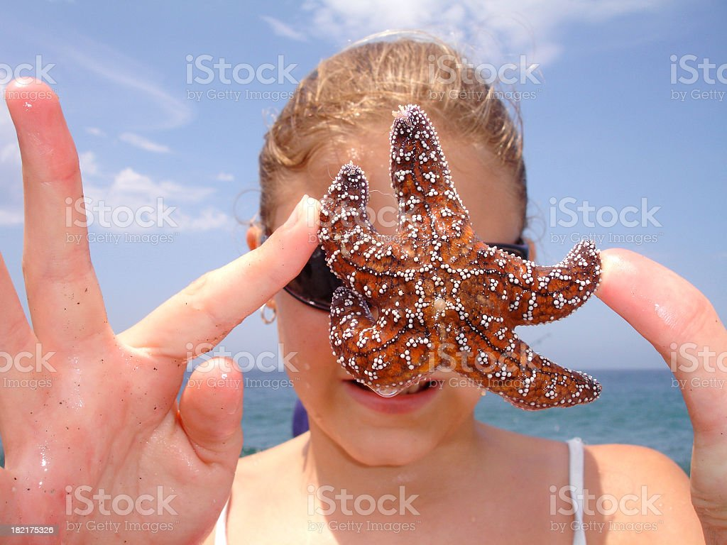 Special Little Starfish royalty-free stock photo