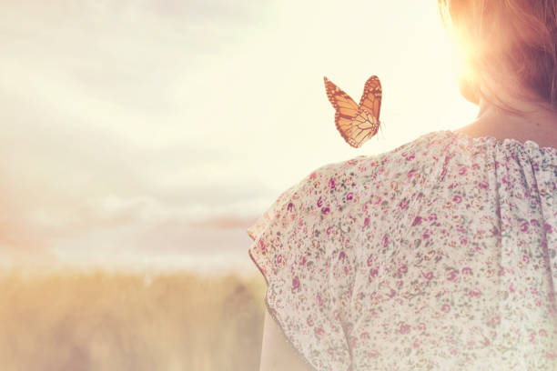 special moment of meeting between a butterfly and a girl in the middle of nature stock photo