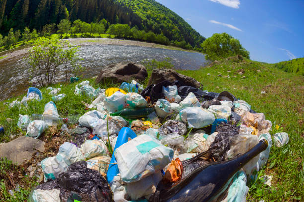 Special operation to clean up the river of debris stock photo