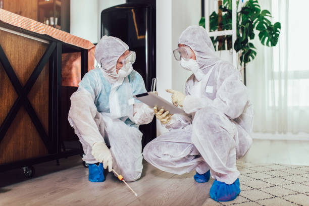 Specialists in protective suits do disinfection or pest control in the apartment. stock photo