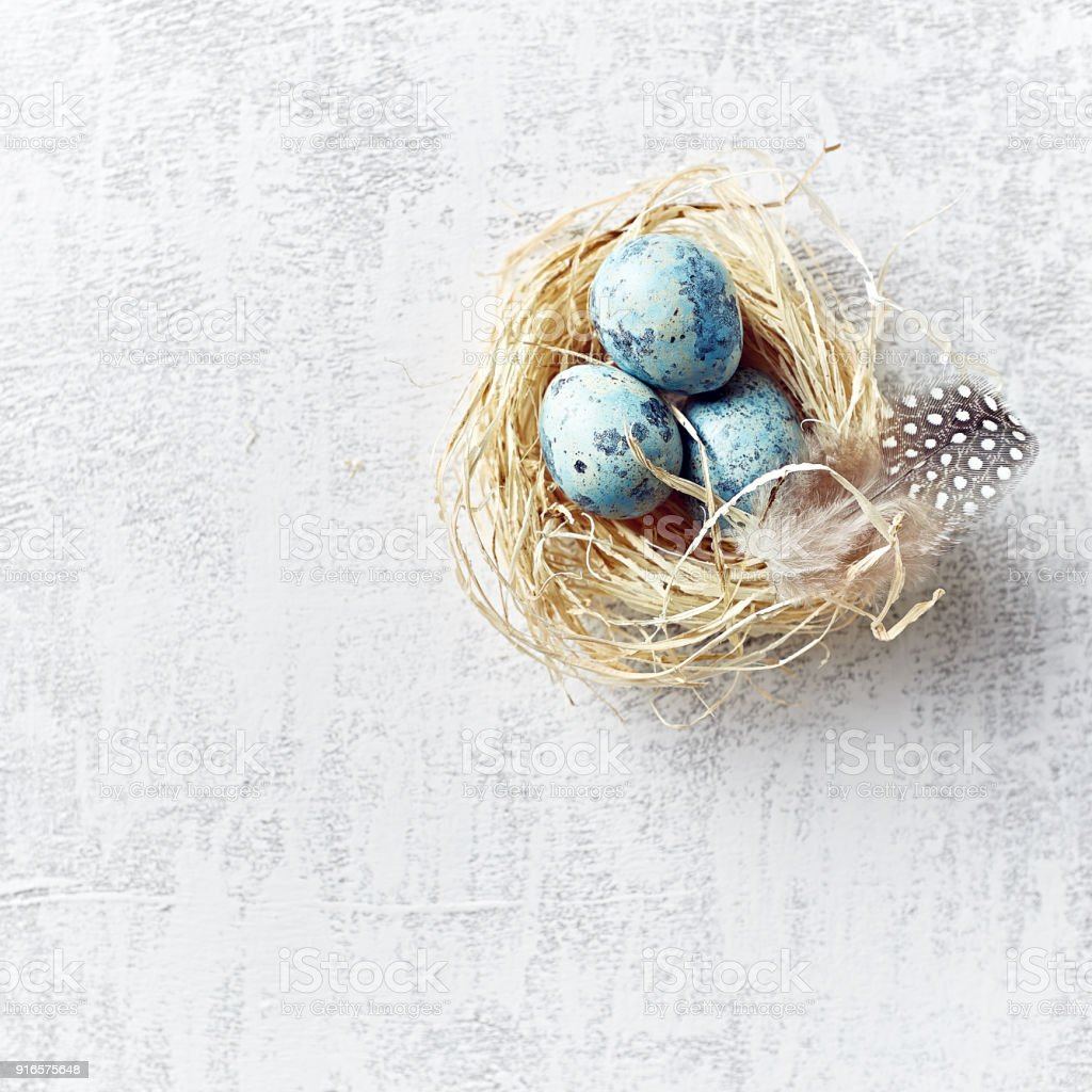 Speckled Easter Eggs and Feathers in a Easter Nest stock photo