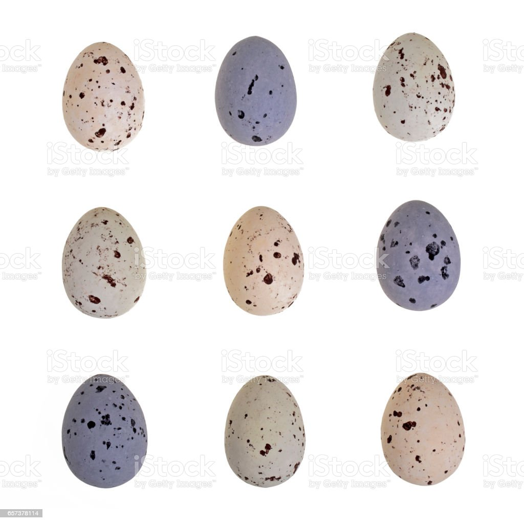 Speckled egg tic-tac-toe stock photo
