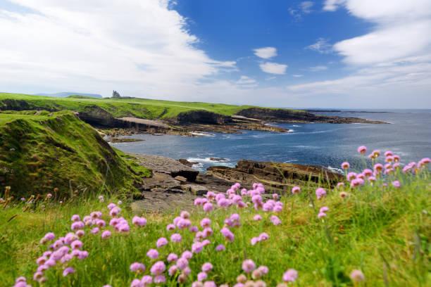 Spektakulären Blick auf Mullaghmore Head mit riesigen Wellen an Land. Malerische Landschaft mit herrlichen Classiebawn Castle. – Foto