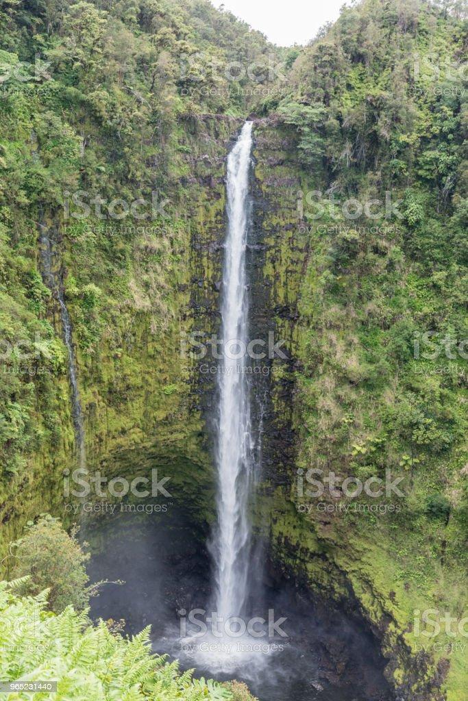 Spectacular Akaka Falls on the Big Island of Hawaii zbiór zdjęć royalty-free