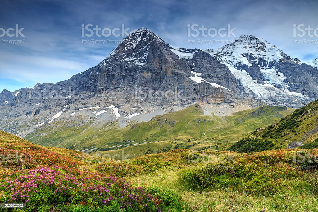 Spectacular alpine landscape with mountain flowers,Switzerland,Europe stock photo