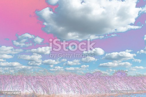 917116520 istock photo Spectacular clouds. 1214074052
