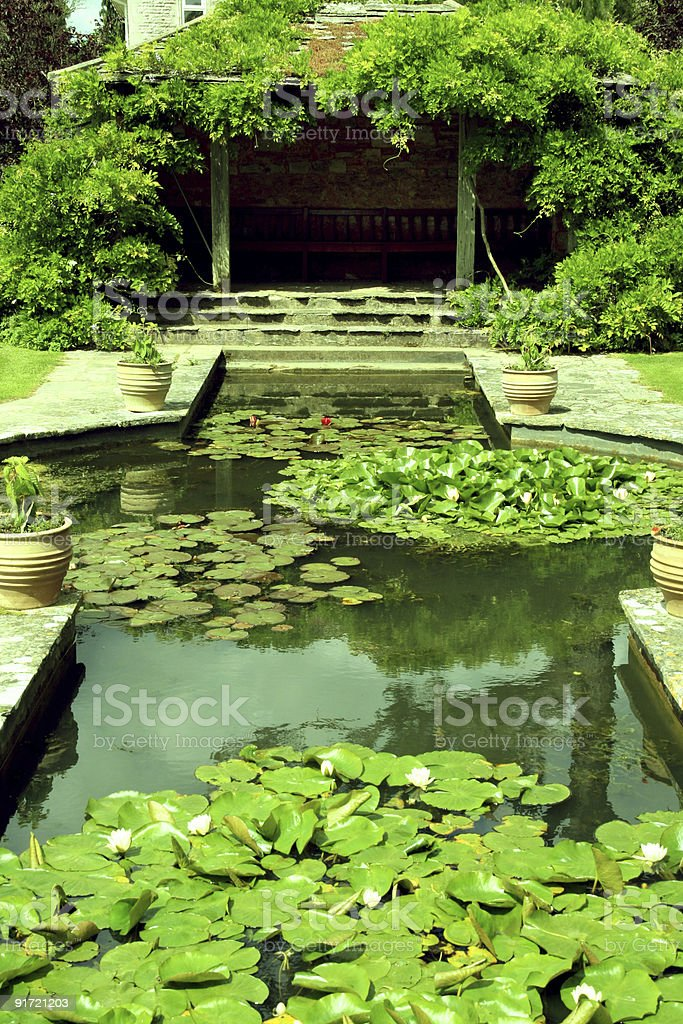 Spectacular gardens with a lily pond as the focal point royalty-free stock photo