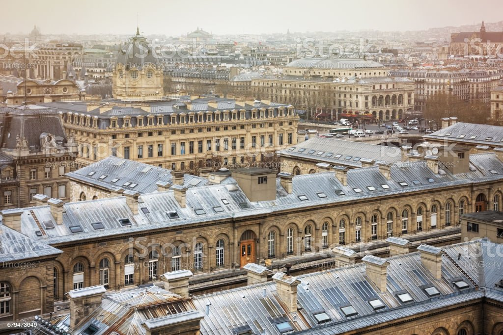 Spectacular image of Paris roofs from Cathedral Notre-Dame de Paris 免版稅 stock photo