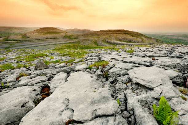 spectacular landscape of the burren region of county clare, ireland. exposed karst limestone bedrock at the burren national park. - county clare stock pictures, royalty-free photos & images