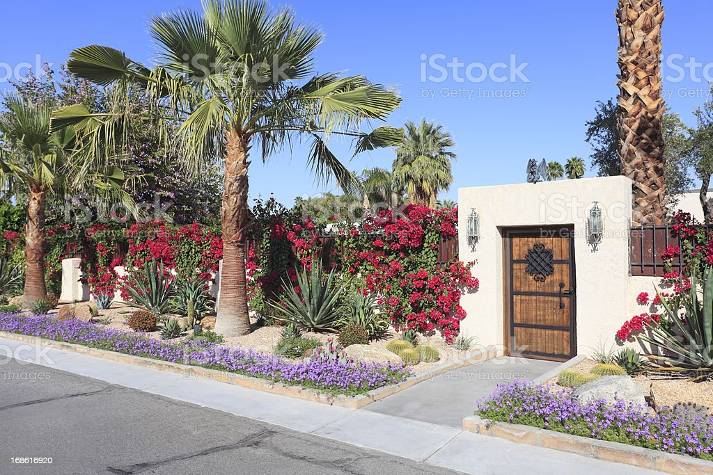Spectacular Residential Desert Landscaping stock photo
