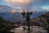 Spectacular view of the Grand Canyon at sunrise, Arizona, USA